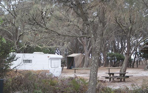 Stumpys Bay 1 Camping