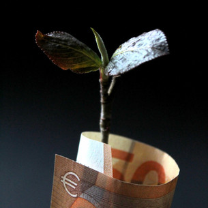 Green Economy and Sustainable Investments
