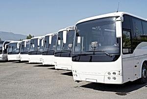 A fleet of buses.