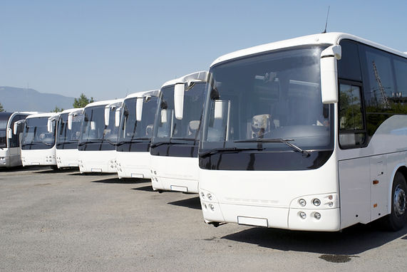 Commercial Buses in a Line