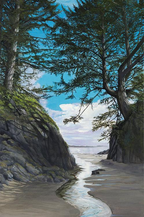 A Path to the Beach