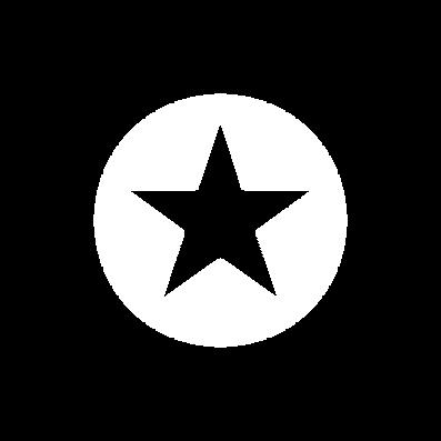 noun_Star icon_3124378.png