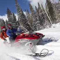 Bear Valley  Winter Sports