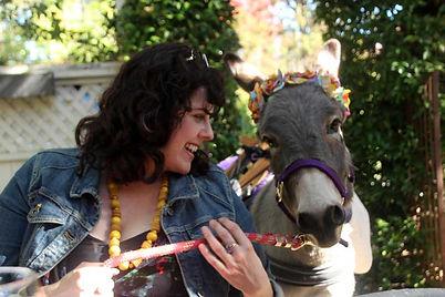 designated-donkeys-anita.jpg