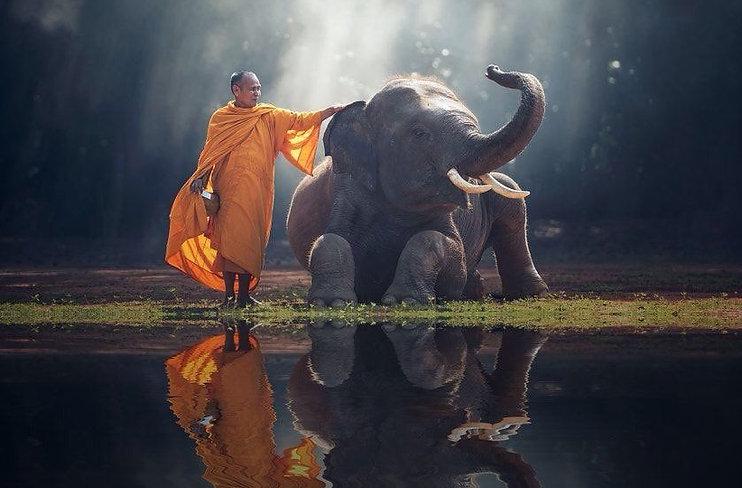 buddhism in everyday life.jpg