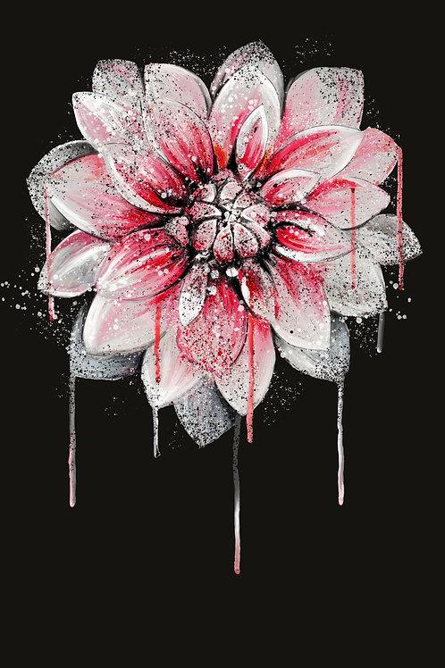 iPhone 8/7/6 PLUS ~ Lotus Wallpaper Download