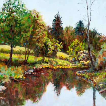 Massabesic Audubon Pond- east