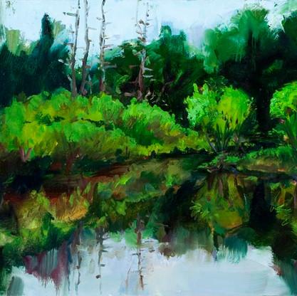 Massabesic Audubon Pond- west