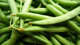 I am green bean serene