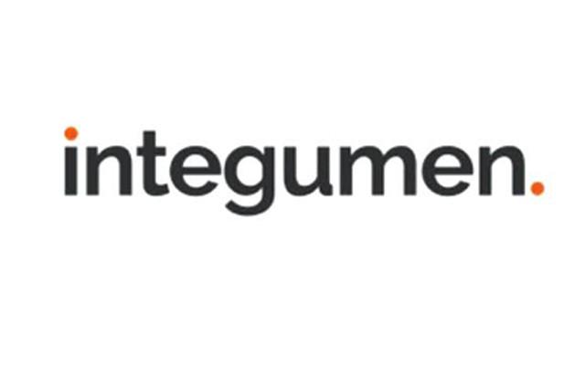 Integumen (SKIN.LSE)