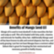 Benefits of Mango Seed Oil.jpeg