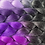 Thumbnail: Panorama Purple - Luxury High Quality OMBRE braiding Hair