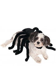 Spider Harness Pet Costume.jpg