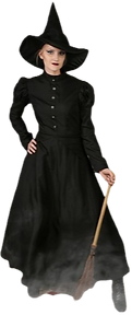 womens-plus-size-witch-costume-update1_e