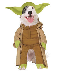 Yoda Dog Costume.jpg