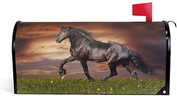Horse Sunset.jpg
