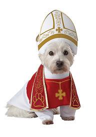HOLY HOUND PET COSTUME.jpg