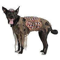 Zombie Dog Costume Pet Halloween Fancy D