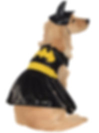 Batgirl Pet Costume.jpg