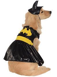 Batgirl Pet Costume.jpg