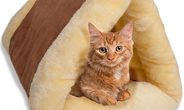 2-in-1 Cat Pet Bed Tunnel Fleece Tube Cu