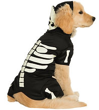 Glows In The Dark Pet Costume.jpg