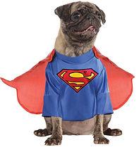 Superman Pet Costume.jpg