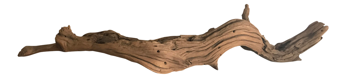 Driftwood_edited.png