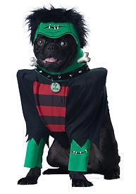 FRANKENPUP DOG COSTUME.jpg