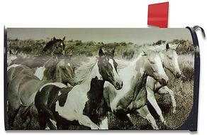 horses mailbox cover.jpg