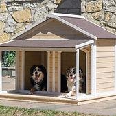 XL Dog House 2 Medium Dogs Kennel Wood I