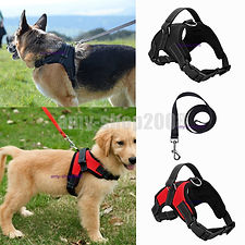 Large Dog Leash Harness Adjustable Pet S