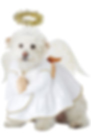 Christmas Angel Pet Dog Costume.jpg
