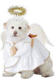 Christmas Angel Pet Dog Costume.jpg