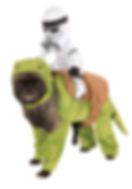 DEWBACK PET COSTUME.jpg