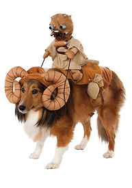 bantha-pet-costume.jpg