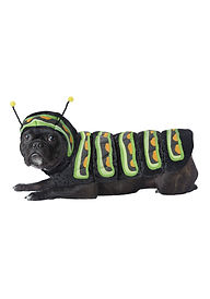CATERPILLAR DOG COSTUME.jpg