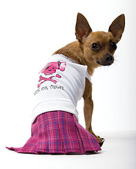 Bad Girl Dog Costume.jpg