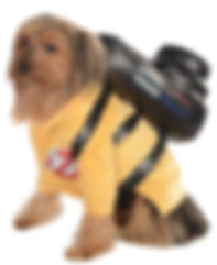 Ghostbusters Pet Costume.jpg
