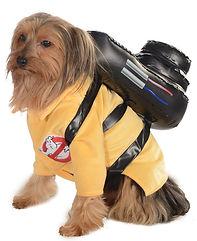 Ghostbusters Pet Costume.jpg