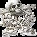 bones_edited.png