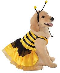 Baby Bumblebee Pet Costume.jpg