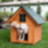 Boomer & George T-Bone A-Frame Dog House