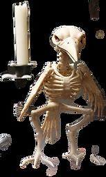 skeleton-raven_edited_edited.png