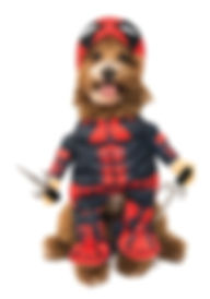 DEADPOOL PET COSTUME.jpg