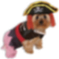 Pirate Doggie Pet Costume Pet Halloween