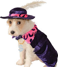 Mac Daddy Pimp Dog Costume.jpg