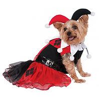 Harley Quinn Costume Pet Harley Quinn Ha