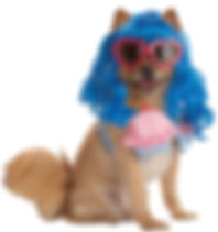 Cupcake Girl Pet Costume.jpg