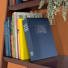 Trademark Home Dictionary Diversion Book